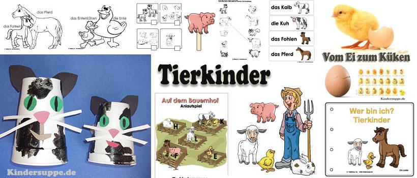 Tierkinder auf dem Bauernhof Ideen für Kindergarten und Kita