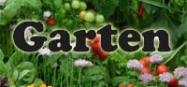 Kindergarten Projekt im Garten und Gartentiere