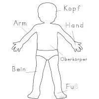 Projekt Das Bin Ich Und Mein Koerper Kindergarten Und Kita Ideen