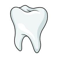 Projekt Zähne Und Zahnarzt Kindergarten Und Kita Ideen