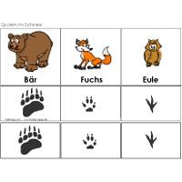 Projekt Tiere Im Winter Kindergarten Und Kita Ideen