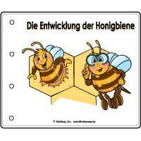 Projekt Bienen Kindergarten und Kita-Ideen