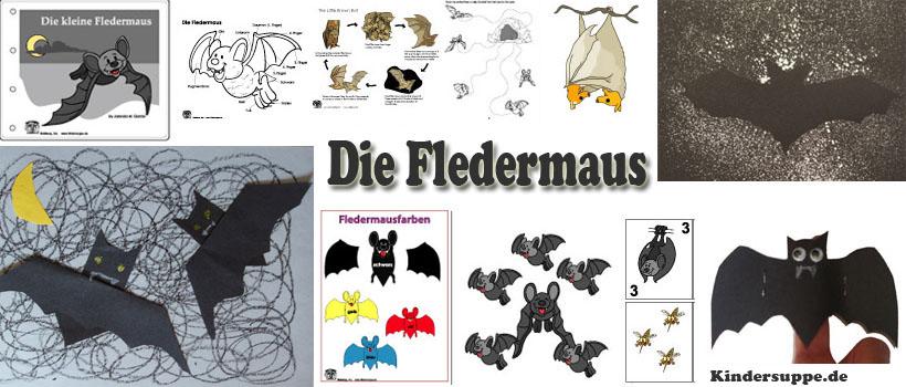 Kindergarten Ideen zum Projekt und Thema Fledermaus