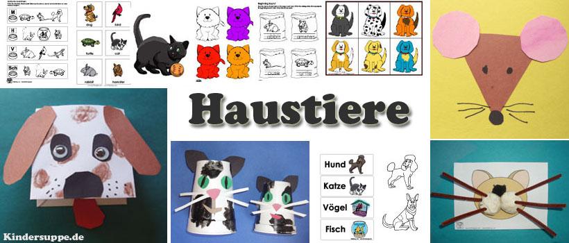 Projekt Katze Hund Und Haustiere Kindergarten Und Kita Ideen