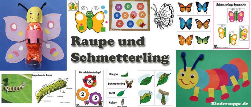 Projekt Schmetterling und Raupe Kindergarten und Kita-Ideen