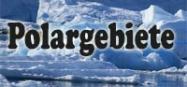 Kindergarten Projekt Polargebiete und Tiere