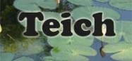 Kindergarten Projekt am Teich und Tiere